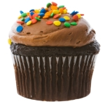 small-chocolate-cupcake2